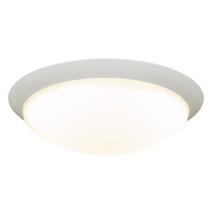 Winston Porter Kendleton 1-Light LED Flush Mount