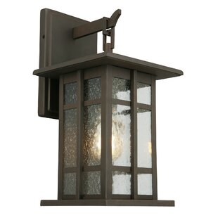 Polanco Outdoor Wall Lantern
