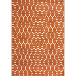 Halliday Traditional Orange Indoor/Outdoor Area Rug