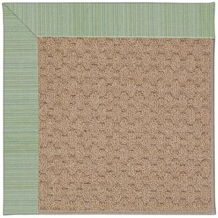 Lisle Machine Tufted Green Spa/Brown Indoor/Outdoor Area Rug