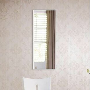 Latitude Run Ankur Wall Mirror
