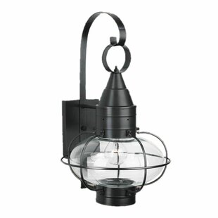 Look for Withyditch Traditional 1-Light Outdoor Wall Lantern By Breakwater Bay