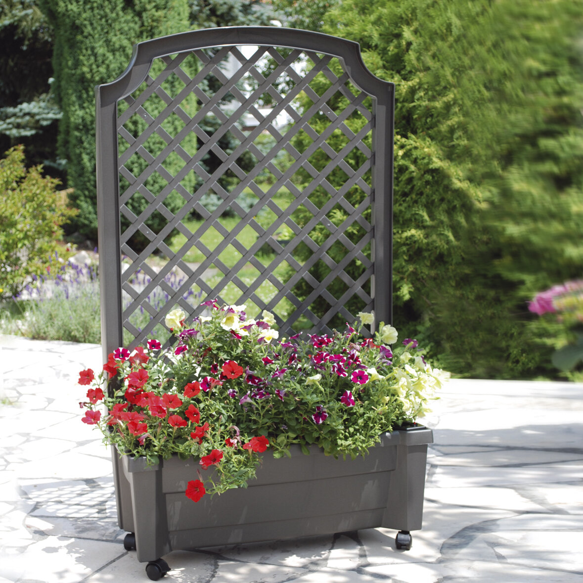 Khw Plastic Self Watering Planter Box With Trellis Reviews