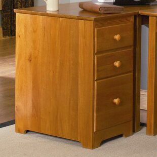 Red Barrel Studio Richland 3-Drawer File Cabinet