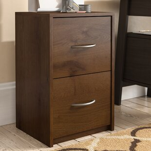 Andover Mills Ivan 2 Drawer File Cabinet