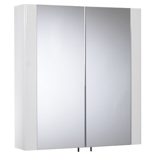 Vioria 60cm X 65cm Surface Mount Mirror Cabinet By Mercury Row