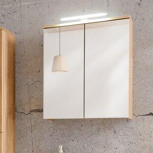 Review Remik 60 Cm X 68 Cm Surface Mount Mirror Cabinet