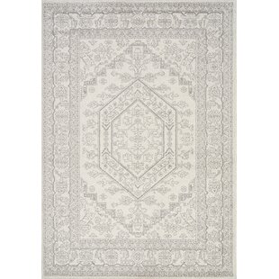 Comparison Converge Elegant Faded Traditional Gray/White Rug By Novelle Home