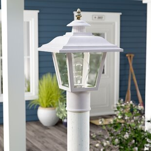 Breakwater Bay Halliday Outdoor 1-Light Lantern Head