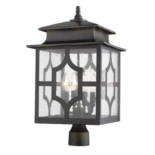 Brackin 4-Light Lantern Head by Darby Home Co