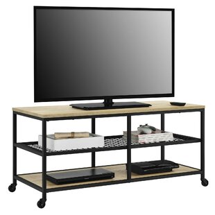 Parrott 48 TV Stand by Williston Forge