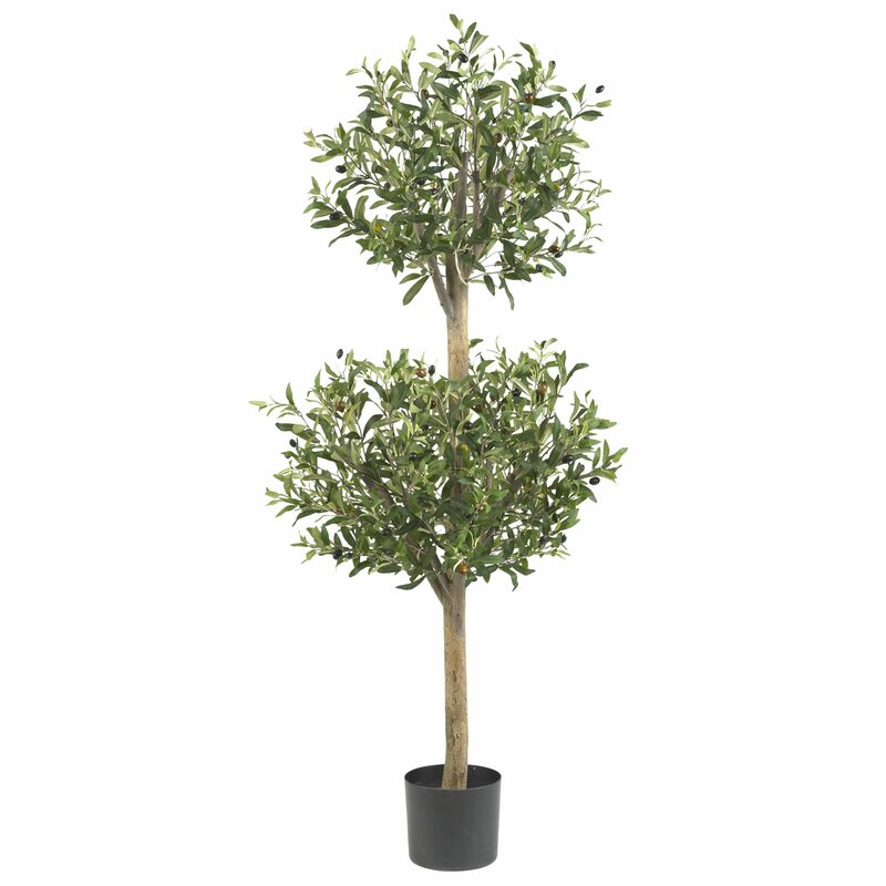 Nearly Natural Olive Tree Topiary in Pot & Reviews | Wayfair