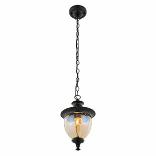 Review Ries 1 Light Outdoor Pendant