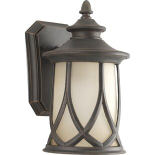 Find Triplehorn 1-Light Outdoor 100W Wall Lantern By Alcott Hill