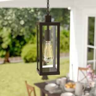Mercury Row Pratt 1-Light Outdoor Hanging Lantern