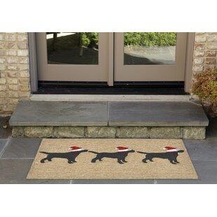 Hand-Tufted Neutral Indoor/Outdoor Area Rug