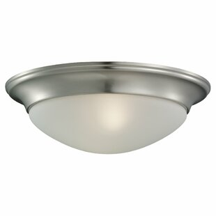 Darby Home Co Byrnedale Flush Mount