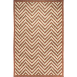 Hughes Coral/Beige Indoor/Outdoor Area Rug