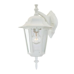 Buy clear Stovall Outdoor Wall Lantern By Charlton Home