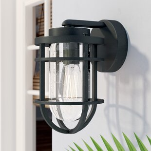 Hobkirk 1-Light Outdoor Wall Lantern