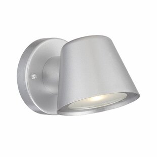 Santo 1-Light Outdoor Sconce