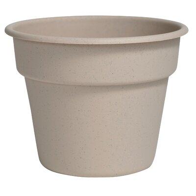 Bloem Dura Cotta Plastic Pot Planter Size: 5.25 H x 6.75 W x 6.75 D, Color: Taupe