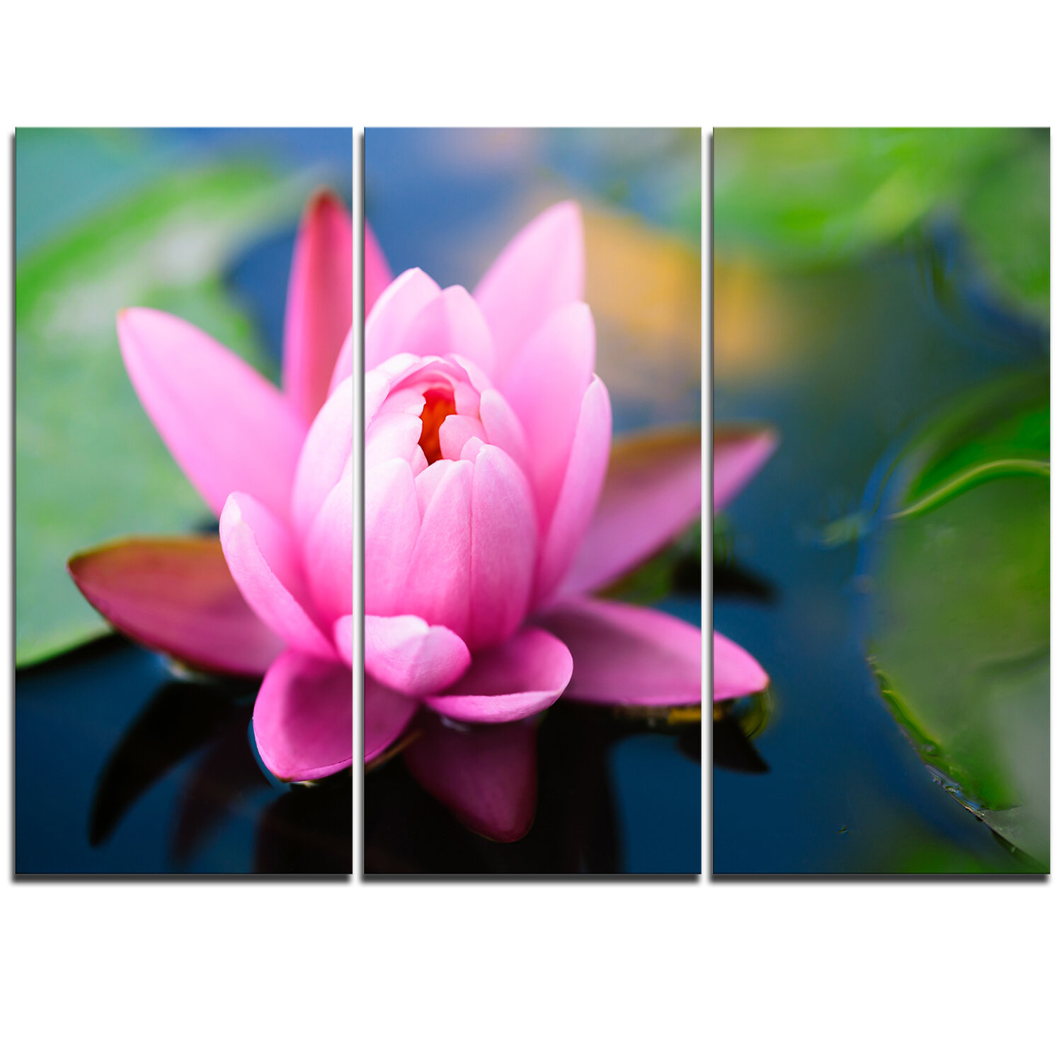 Designart Large Lotus Flower In The Pond 3 Piece Graphic Art On