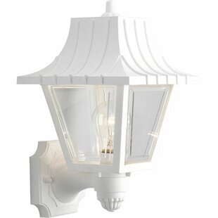 Triplehorn Outdoor Sconce by Alcott Hill
