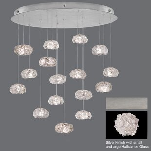 Natural Inspirations 16-Light Cluster Pendant by Fine Art Lamps