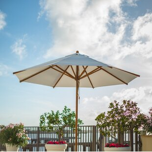 Yadira 2.5m Traditional Parasol By Freeport Park