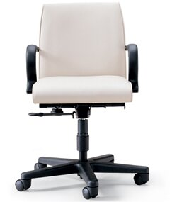 David Edward Ergo Desk Chair