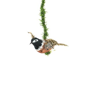 Lot Of 6 Glittered Tropical Parrot Feather Bird Ornaments 4 6 5 Ornaments Home Garden