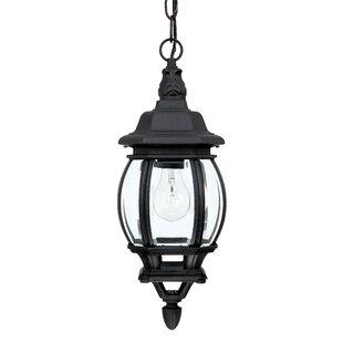 Alcott Hill Herkimer 1-Light Outdoor Hanging Lantern