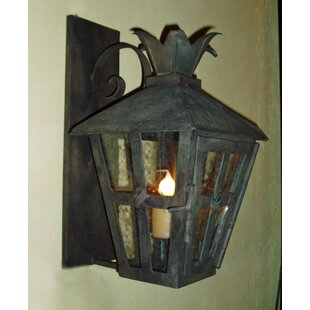 Merlyn 1-Light Outdoor Wall Lantern by As..