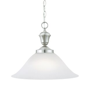 Charlton Home Sterling 1-Light Cone Pendant