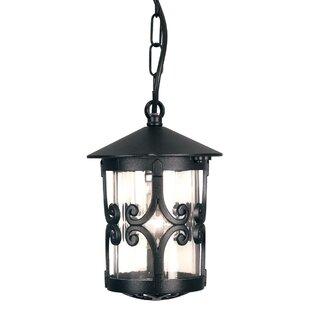 Review Westbury 1 Light Outdoor Hanging Lantern