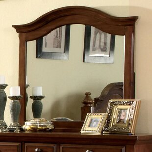 Darby Home Co Aurick Light Wall Mirror