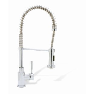 Meridian Pull Down Single Handle Kitchen Faucet