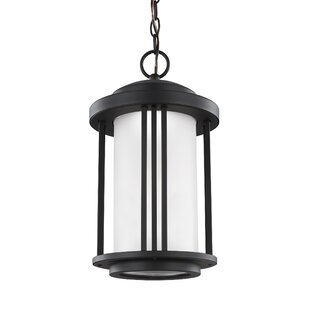 Dunkley 1-Light LED Outdoor Pendant By Darby Home Co Outdoor Lighting