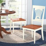 Schacht Solid Wood Queen Anne Back Side Chair (Set of 2) by Winston Porter