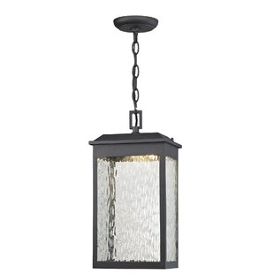 Darby Home Co Alyn 1-Light Outdoor Hanging Lantern