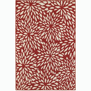 Izora Red/White Indoor/Outdoor Area Rug
