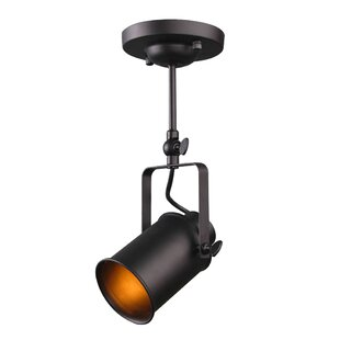Ebern Designs Lanora Outdoor Spotlight