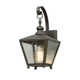 Sybil 1-Light Outdoor Wall Lantern by Darby Home Co