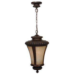 Charlton Home Oakhill 1-Light Outdoor Pendant