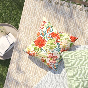 Adrianne Outdoor Throw Pillow