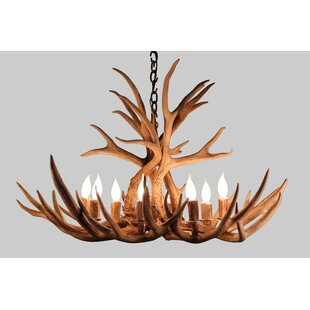 Alexandrine Mule Deer 8-Light Chandelier by Loon Peak