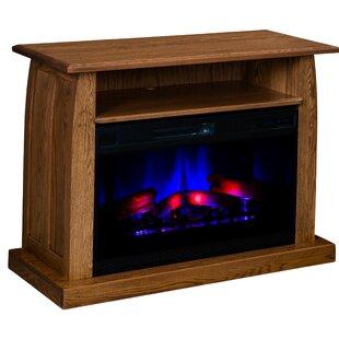 Umaiza Curved LED Electric Fireplace By Latitude Run