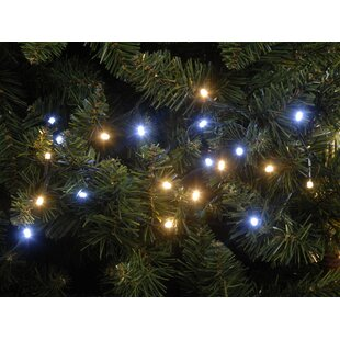 600 White LED String Lights By The Seasonal Aisle