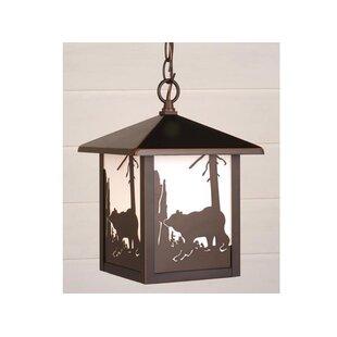 Loon Peak Josefina 1-Light Glass Shaded Outdoor Hanging Lantern